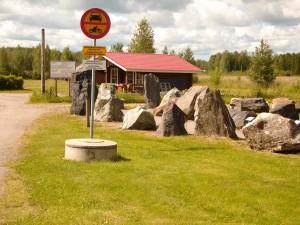 Uusikaarlepyy-Oravainen - 7498